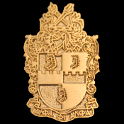 APA Gold Shield Lapel Pin