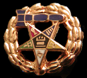 OES Past Matron Lapel Pin