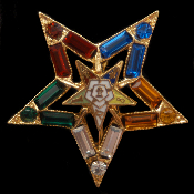 OES Crystal Lapel Pin