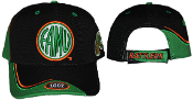 FAMU Baseball Hat