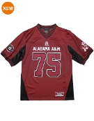 Alabama A&M Jersey