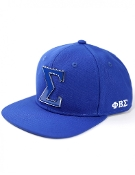 PBS Snap Back Hat